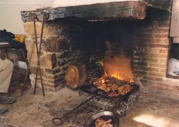 Cornellana_foc